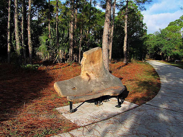 Bench by Christopher Fennell, Wall Springs Park, Palm Harbor, Florida