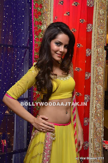 Shahzahn%2520Padamsee%2520Hot%2520Belly%2520Button%2520Pics%2520-%2520bollybreak_com_DSC_8452.jpg