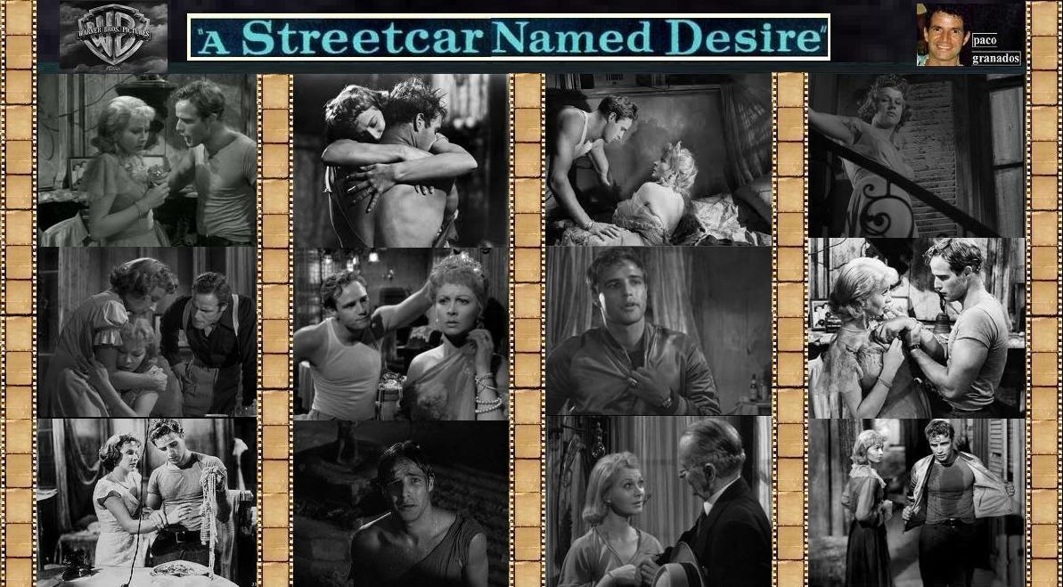 thesis for a streetcar named desire Williams took great care in applying each of these literary device techniques to the theme as he presents an intriguing contrast between blanche and stanley, vivid images both animalistic and broken, and imploring the use of the odyssey to.