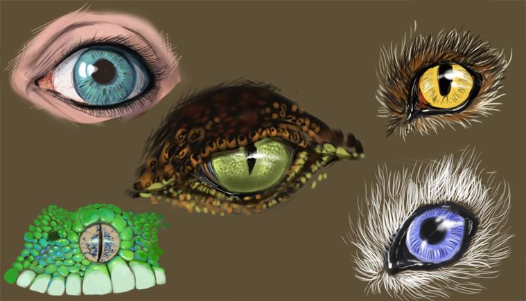D Ainsworth Art Animation Digital Painting Eyes Textures