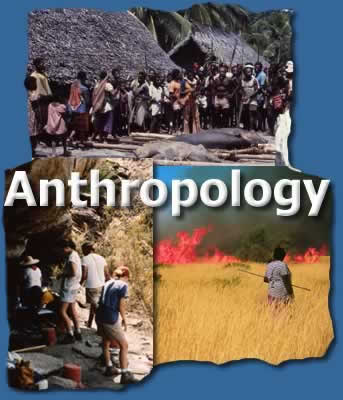 Anthropology - Fungsi Unsur-unsur Kebudayaan