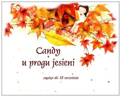 Candy u Małgosi X