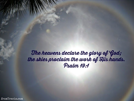 psalm 19 heavens declare the glory of God