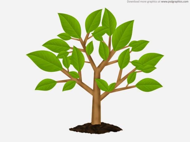 Green Tree Environment Symbol