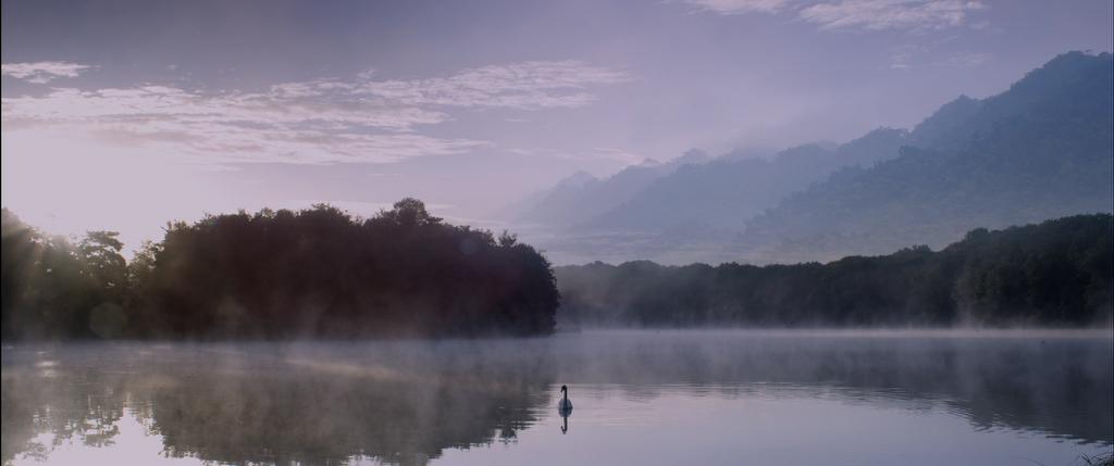 Paysage paisible du film Koan de Printemps