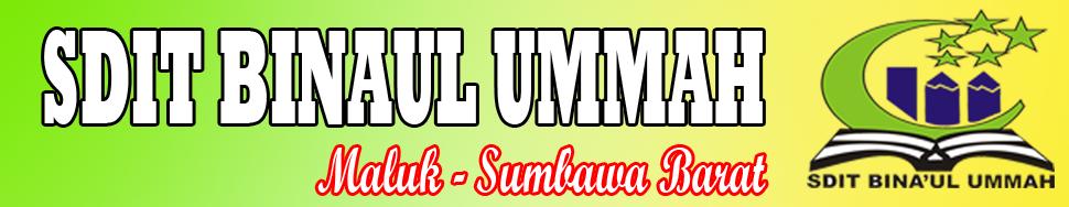 SDIT BINAUL UMMAH