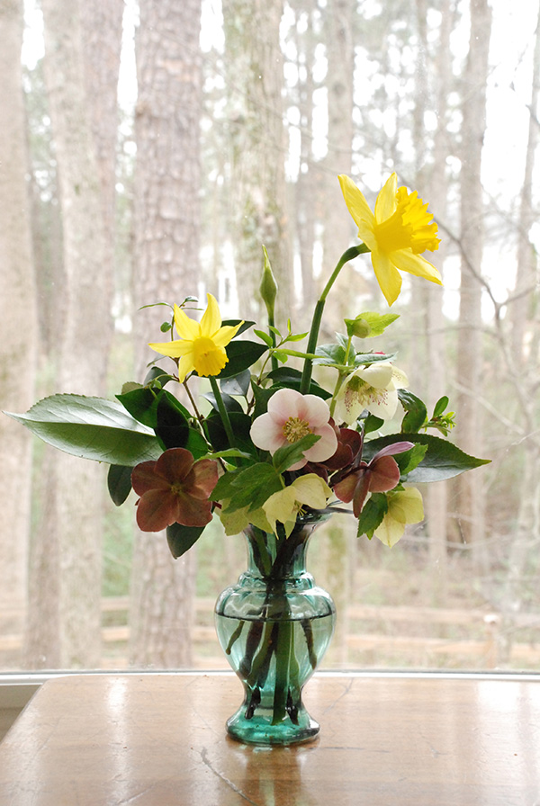 Early spring flowers valentine arrangement the curtis casa mightylinksfo