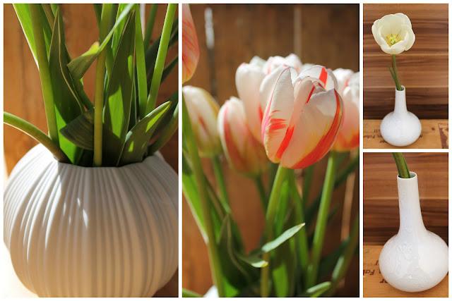 Tulpen Blumenfeld