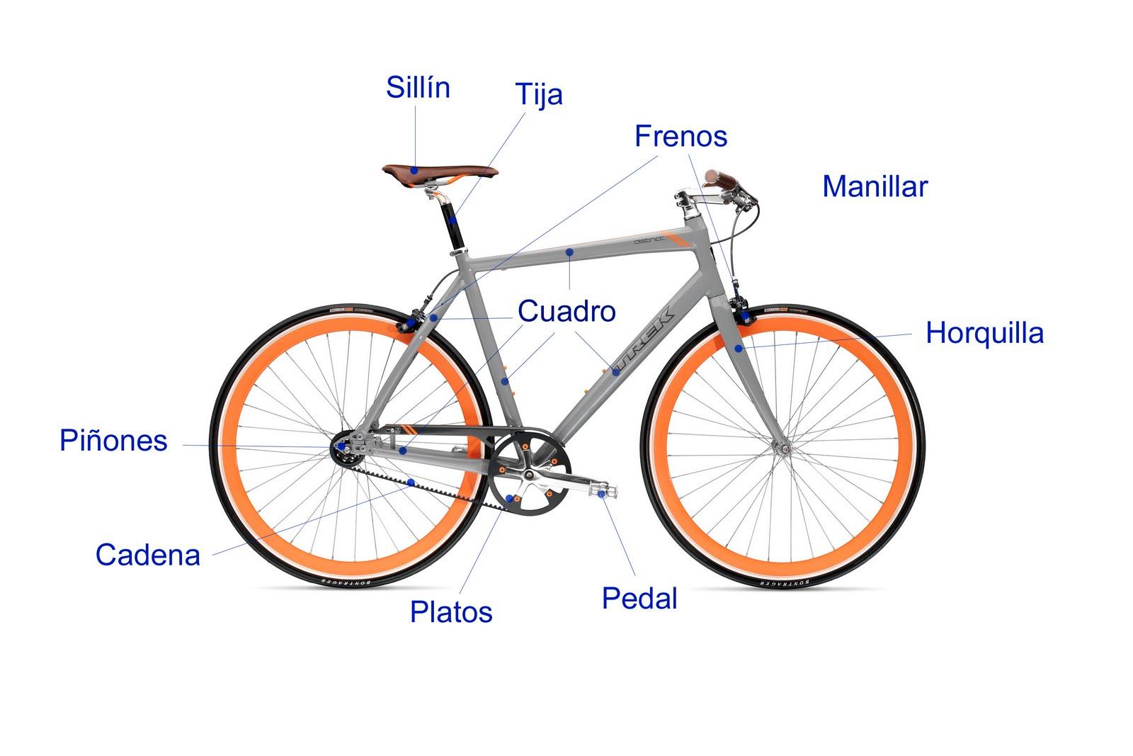 Especialistas en bicis el ctricas qu es una bicicleta - Como guardar bicis en un piso ...