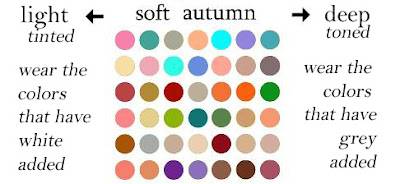 Expressing Your Truth Blog 16 Color System Palette Guesses