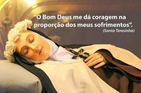 Resultado de imagem para santa terezinha e a Sagrada Face