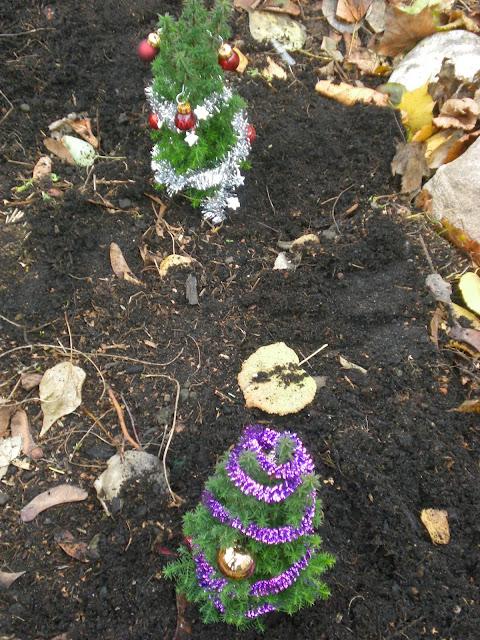 Urban Gardening Weihnachtskugeln Dortmund