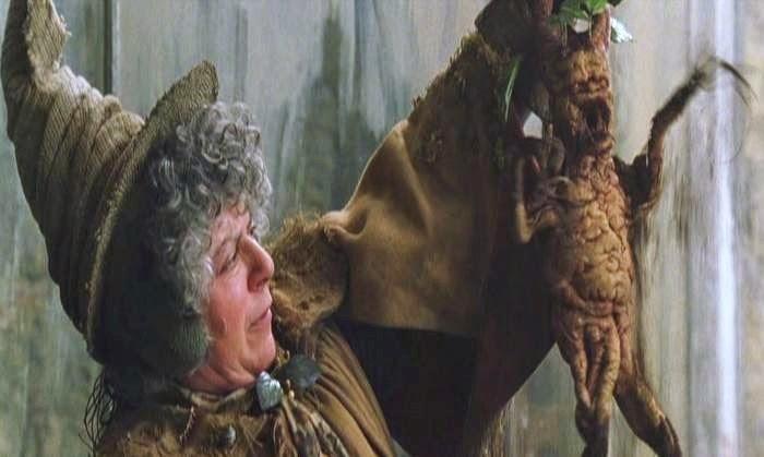 Mandrake dan Sihir