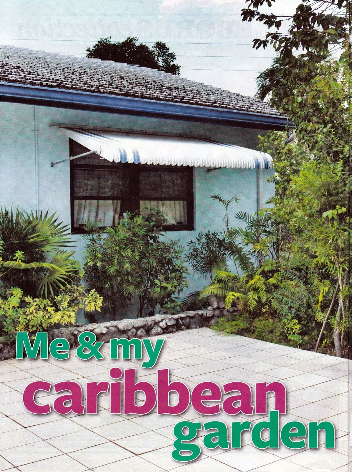 Caymannature Me And My Caribbean Garden
