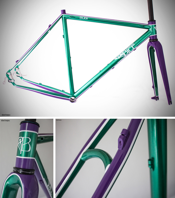 Ciclocross - Bice Bicycles