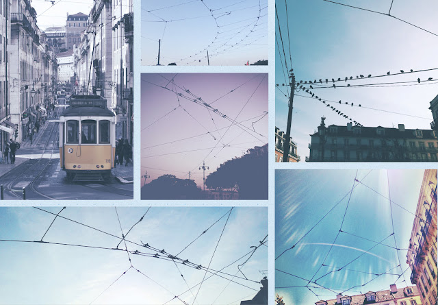 Images of Lisbon's tram cables, from which LX Type is constructed