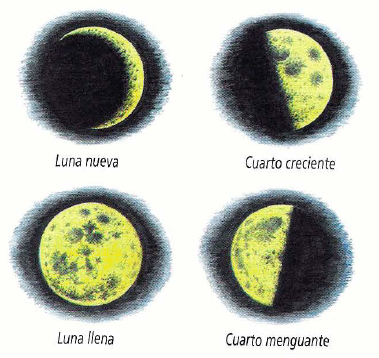 Los primeros a la par fases de la luna Cuando hay luna creciente