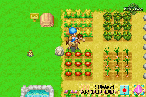 download harvest moon mineral town