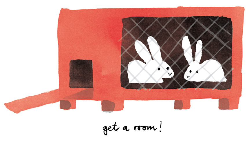 Ink wash illustration of two white rabbits in a hutch. Edward Underwood for Lisa Jones Studio