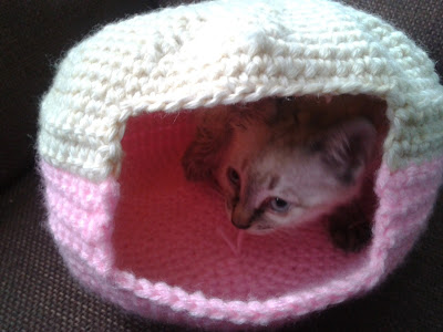 casa gato crochet