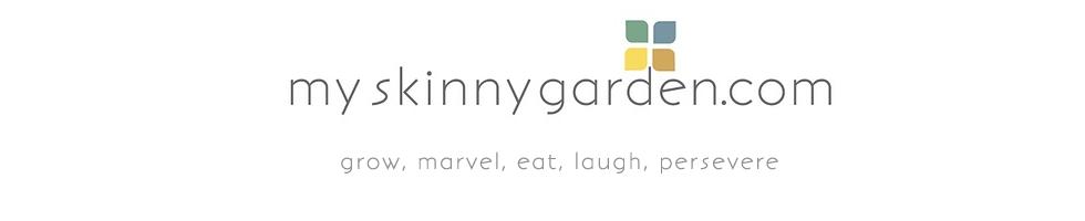my-skinny-garden-2.png