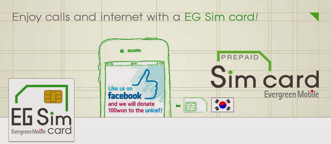 EG SIM Card Service