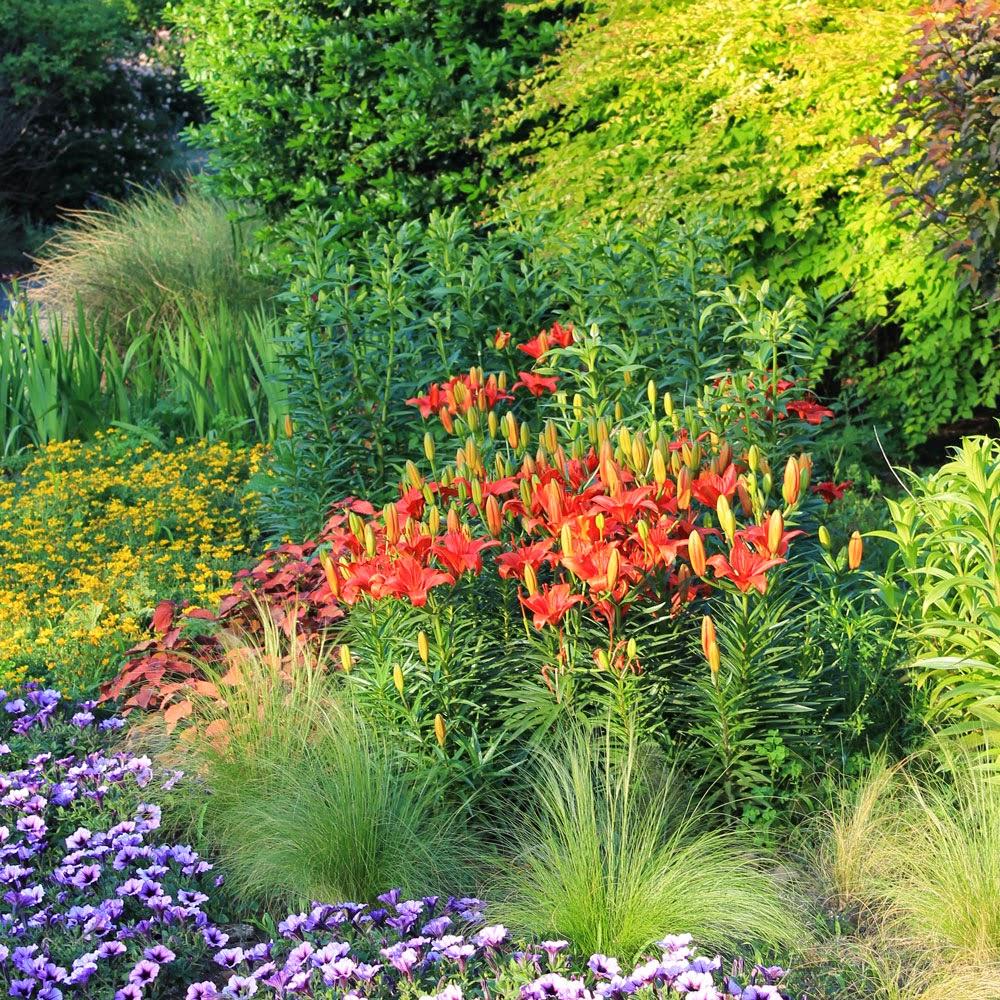 garden2blog-2015.jpg