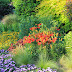 9 Garden Design Tips from Moss Mountain