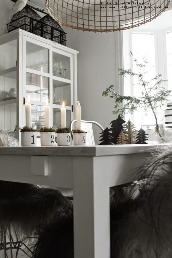 advent, jul, julen 2014, vitt, svart och vitt, svartvit, inredning julstämning, adventsljus, tredje advent, granar, gran, juldekorationer,