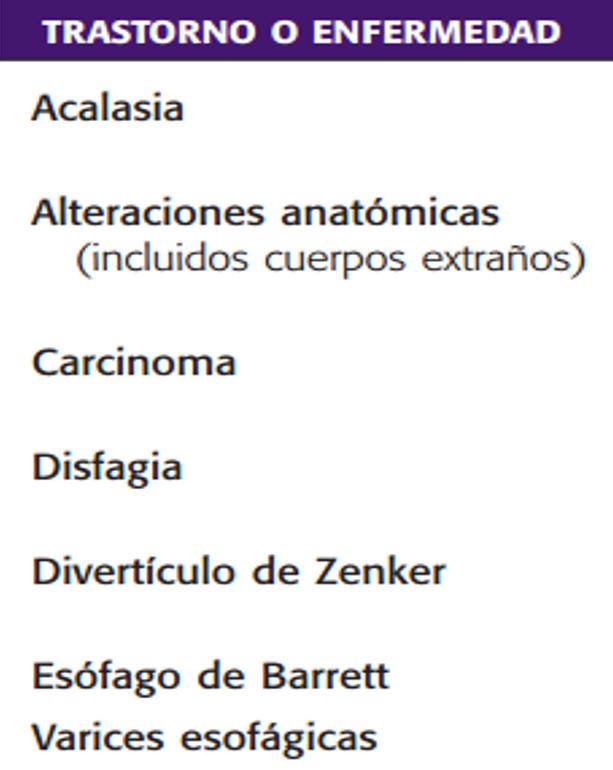 Estudios Contrastados del Sistema Digestivo: febrero 2016
