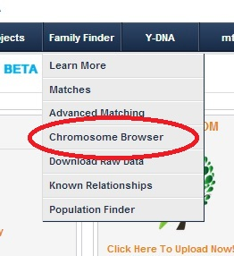 Chromosome Browser Screenshot ftDNA