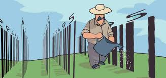 [Imagem: Dibujo-Agricultor+riega+c%C3%B3digos+de+barra.jpg]