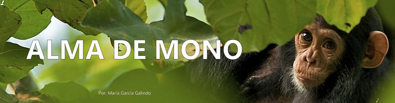 Alma de mono