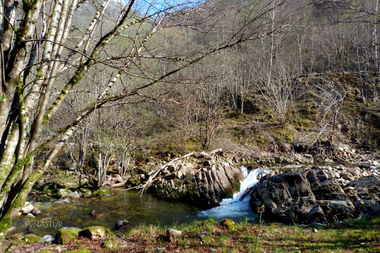 pequeña cascada en el Río Semeldon - Parque Natural de Ponga - Asturias