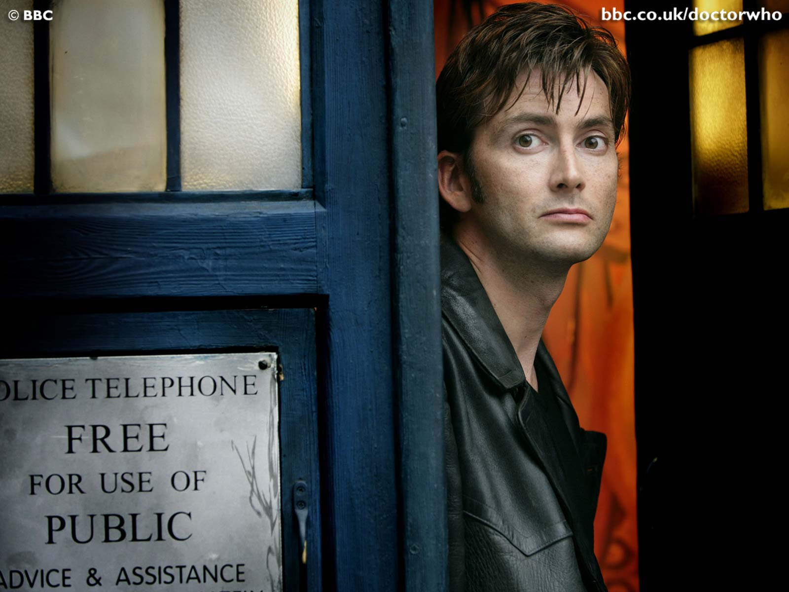 Down The Rabbit Hole: A Companion's Guide: The 10th Doctor