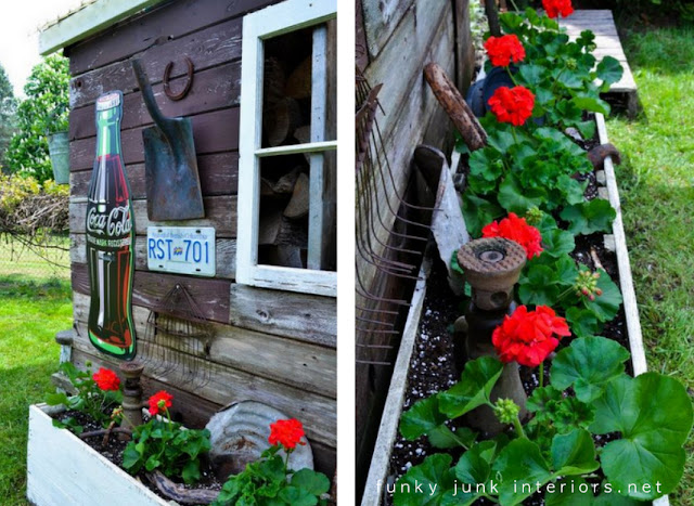 rustic garden shed with flowerbox filled with red geraniums and rusty junk
