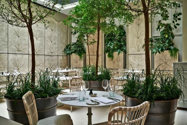 Terraza con decoración vegetal
