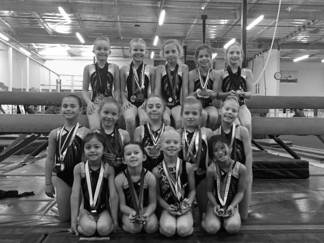 2015 Level 3 Junior Olympic Team