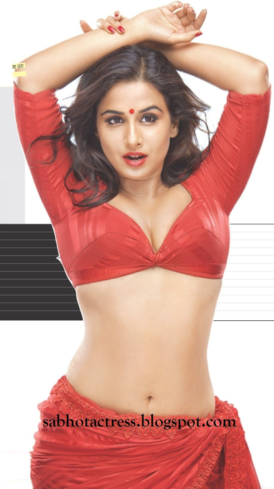 Vidya Balan1 -  Vidya Balan Dirty Picture HQ Wallpapers