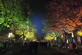 ベルリン市内 (ブランデンブルグ凱旋門へ向かう) 菩提樹の並木道