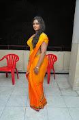 Jayavani glam pics in saree-thumbnail-13
