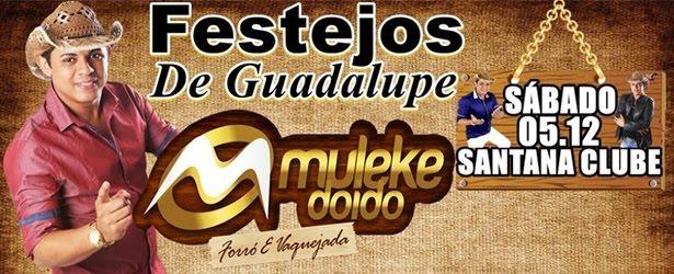 Não Perca a Primeira Grande Festa do Festejo de Guadalupe