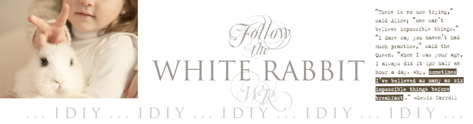 WHITE RABBIT iDiY