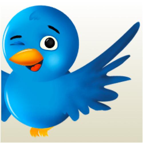 Twitter slika