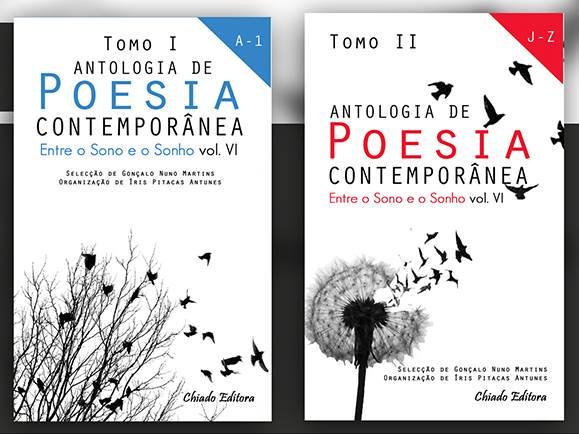 Participei na antologia «ENTRE O SONO E O SONHO - Vol. VI» com o poema «SONOLÊNCIA ONÍRICA»