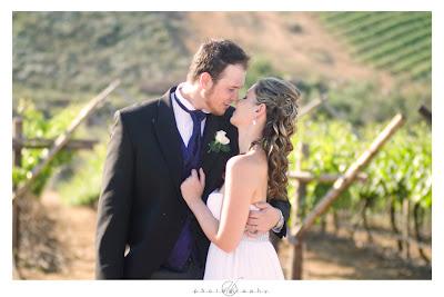 DK Photography K43 Kirsten & Stephen's Wedding in Riebeek Kasteel  Cape Town Wedding photographer