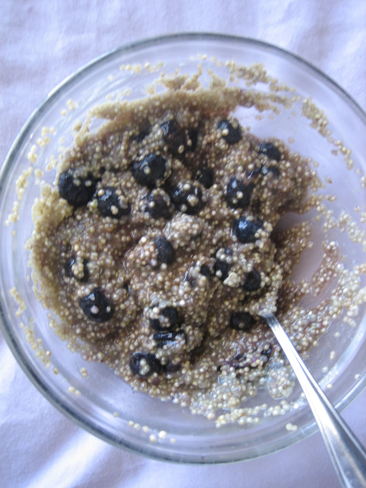 Discovering the Extraordinary: Blueberry Quinoa Cereal