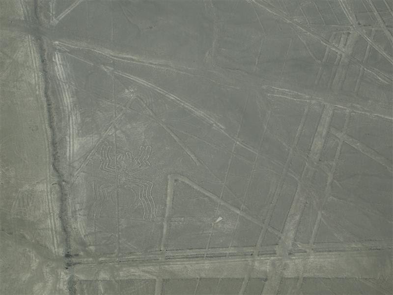 Líneas de Nazca - La araña