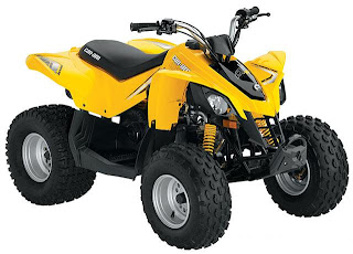 DS 90 and DS 70 Youth Sport ATV Renegade picture
