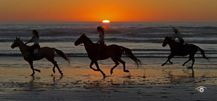 Black horses running on the beach